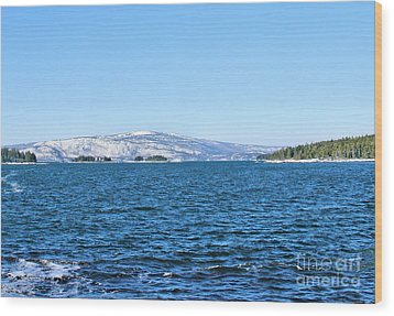 Acadia  Wood Print by Debbie Stahre