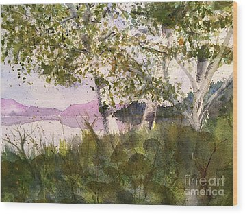 Acadia Morning Wood Print by Maura Satchell