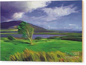 Achill Island Ireland  Sunny Wood Print by Bob Salo