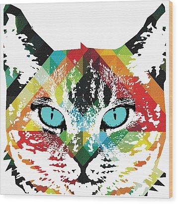Acid Cat Dream By Robert R Wood Print