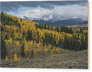 Wood Print featuring the photograph Acorn Creek Autumn by Aaron Spong