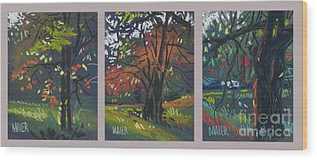 Across The Creek Triplet Wood Print by Donald Maier