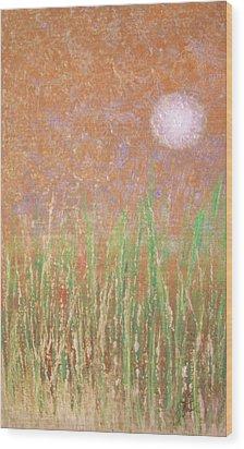 Across The Marsh Wood Print