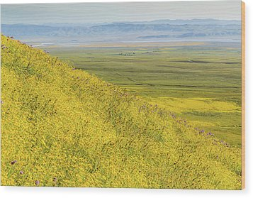 Wood Print featuring the photograph Across The Plain by Marc Crumpler