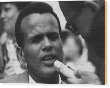 Actor And Singer Harry Belafonte Wood Print by Everett