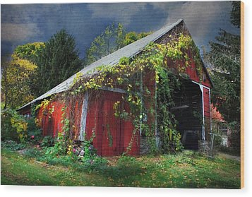 Adams County Winery Wood Print by Lori Deiter