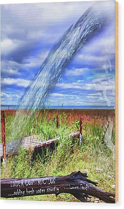 Adding Fresh Water Shortly Wood Print by Cathy  Beharriell