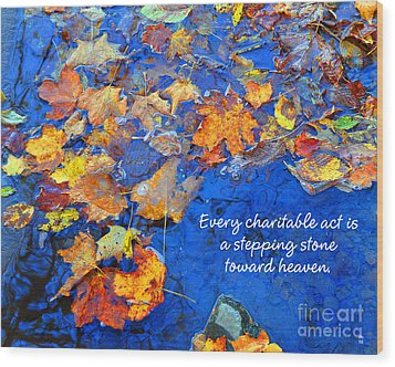 Wood Print featuring the photograph Adironack Laughing Water Charity by Diane E Berry