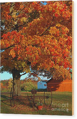 Adirondack Autumn Color Wood Print by Diane E Berry