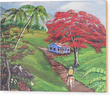 Admirando El Campo Wood Print by Luis F Rodriguez