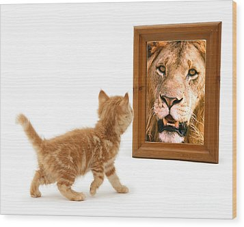 Admiring The Lion Within Wood Print
