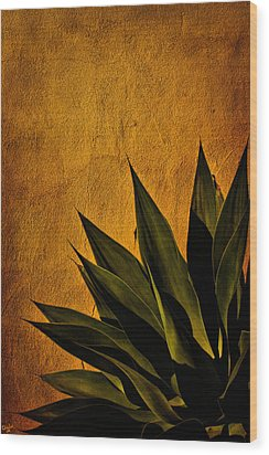 Adobe And Agave At Sundown Wood Print
