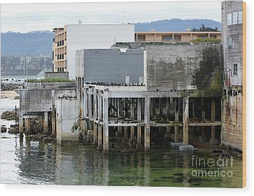 Wood Print featuring the photograph Aeneas Ruins In Springtime At Cannery Row by Susan Wiedmann