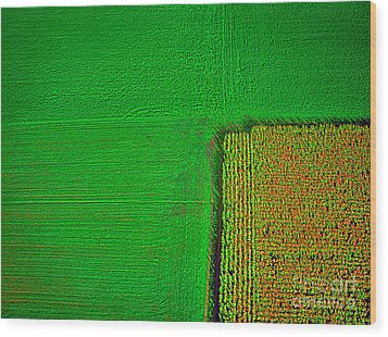 Aerial Farm Mchenry Il  Wood Print by Tom Jelen