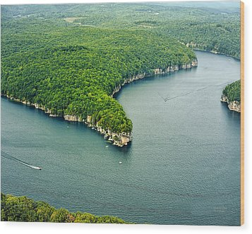 Aerial Image Of  Long Point Cliff Wood Print by Mark Allen