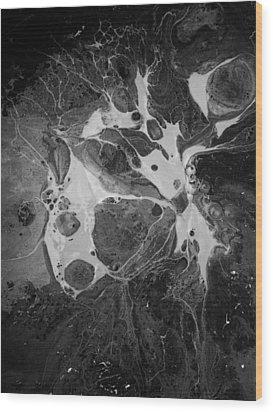 Aerial Photo Vulture Beak Yawn Wood Print