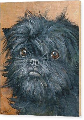 Affenpinscher Portrait Wood Print by Dottie Dracos
