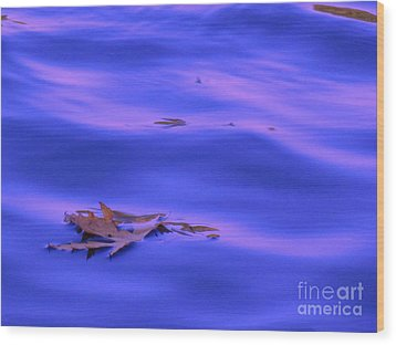 Afloat Wood Print by Sybil Staples