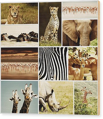 African Animals Safari Collage  Wood Print by Anna Om