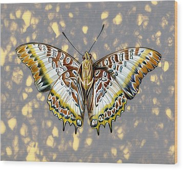 African Butterfly Wood Print by Mindy Lighthipe