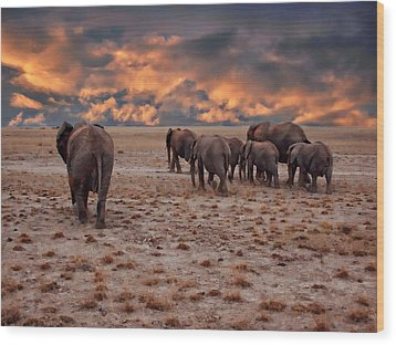 African Elephants Wood Print