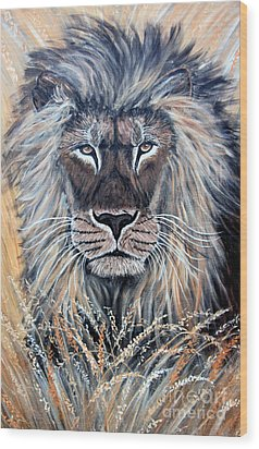 African Lion Wood Print by Nick Gustafson