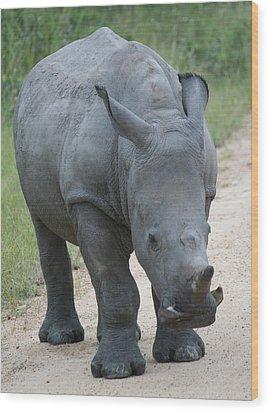 African Rhino Wood Print