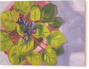African Violet Still Life Oil Painting Wood Print by Nancy Merkle