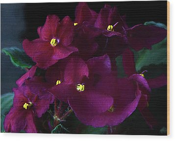Wood Print featuring the photograph African Violets Photo Art by Sharon Talson