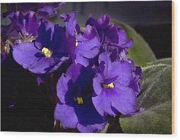 Wood Print featuring the photograph African Violets by Phyllis Denton