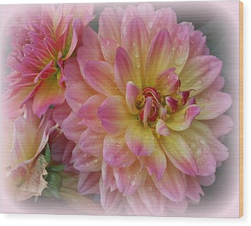 After The Rain - Dahlias Wood Print by Dora Sofia Caputo Photographic Art and Design