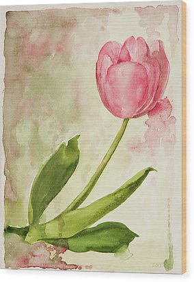After The Rain  Tulip 2 Wood Print