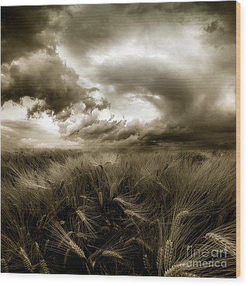 Wood Print featuring the photograph After The Storm  by Franziskus Pfleghart