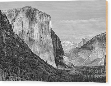Wood Print featuring the photograph Afternoon At El Capitan by Sandra Bronstein