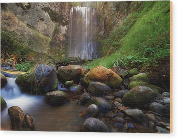 Afternoon Delight At Upper Bridal Veil Falls Wood Print by David Gn