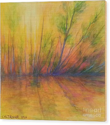 Afternoon Glow  Wood Print
