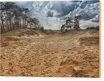 Afternoon In The Dunes Of Kootwijkerzand Wood Print