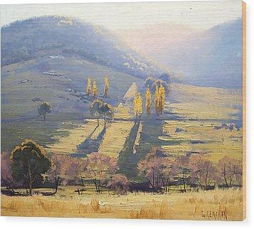 Afternoon Light Tarana  Wood Print by Graham Gercken
