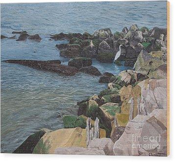 Afternoon On Barnegat Bay  Wood Print
