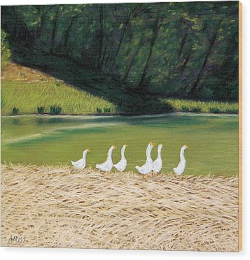 Afternoon On Goose Pond Wood Print by Jan Amiss