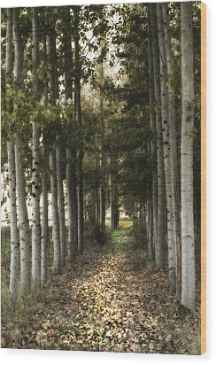 Afternoon Stroll Wood Print by Rebecca Cozart
