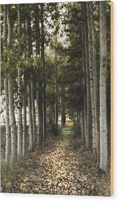 Afternoon Stroll Wood Print
