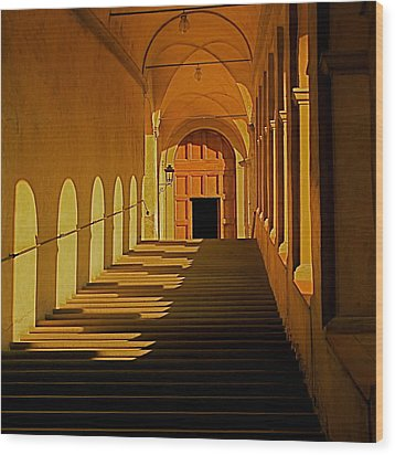Wood Print featuring the photograph Afternoon Sun-certosa Del Galluzzo by Nicola Fiscarelli