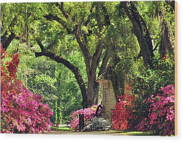 Wood Print featuring the photograph Afton Villa Gatehouse by Helen Haw
