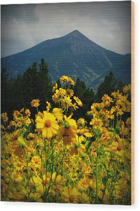 Agassiz Peak High Above The Meadow Wood Print