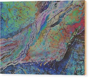 Agate Inspiration - 21b Wood Print by Sue Duda