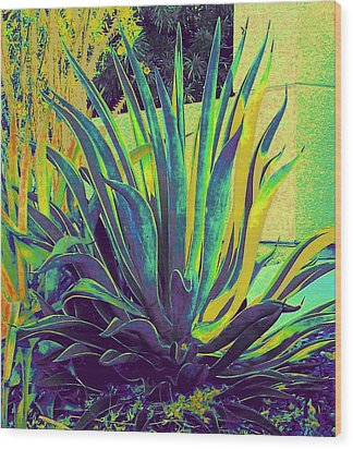 Agave Maria Wood Print by Randall Weidner