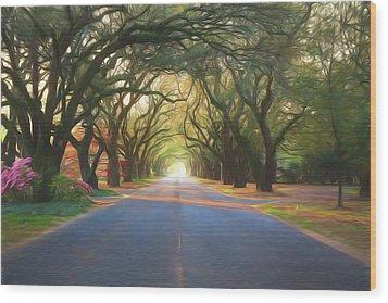 Aiken South Boundary II Wood Print