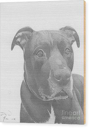 Ajax Graphite Dog Portrait  Wood Print