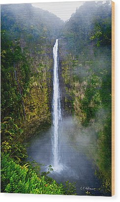 Akaka Falls Wood Print by Christopher Holmes